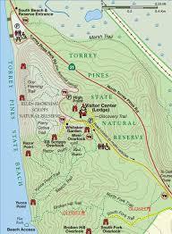 Torrey Pines State Natural Reserve pic